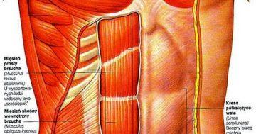 Modelujemy mięśnie brzucha!